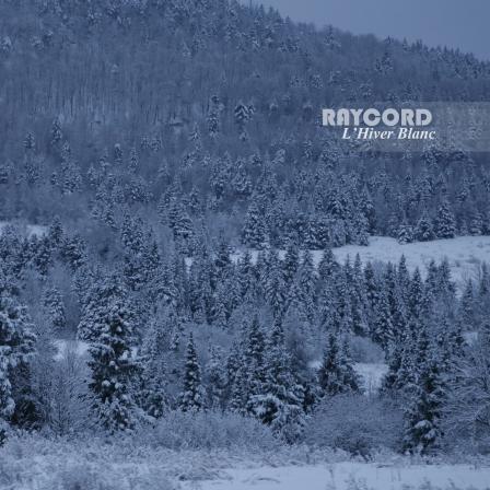 raycord l'hiver blanc